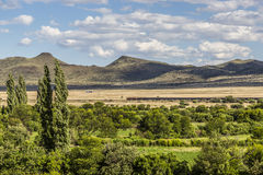 Landscape Scene in South Africa Royalty Free Stock Photo