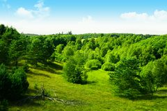 Landscape scenery. Colorful field and forest scenery Stock Photography