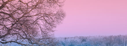 Landscape On The Sea. Beautiful twilight landscape on the frozen sea royalty free stock image