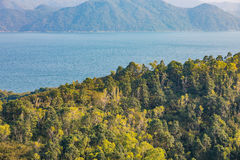 Landscape, sea, and forest. Asia, Autumn royalty free stock image