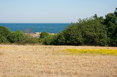 Landscape by the sea. The picturesque landscape by the sea Stock Images