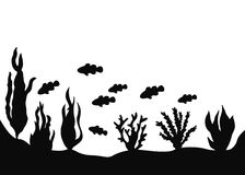 Landscape of the seabed. Clown fish floating near a seaweed vector silhouette vector illustration