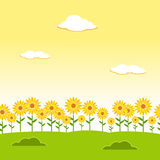Landscape seamless background. Garden seamless background. Sunflower garden background. Flower landscape background. Afternoon lan Royalty Free Stock Image