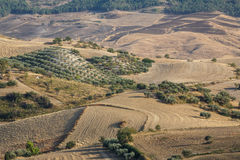 Landscape seen around the archaeological site of Morgantina Stock Photo