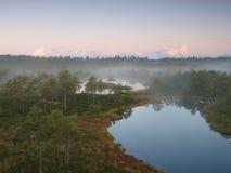 Landscape of Seli Bog stock image
