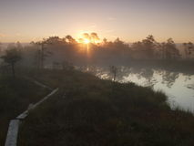 Landscape of Seli Bog royalty free stock photography