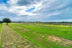 Landscape in Selinunte archaeological area Royalty Free Stock Image