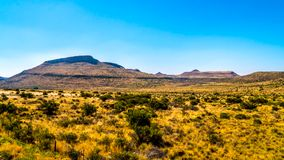 Landscape of the semi desert Karoo Region in Free State and Eastern Cape. Provinces in South Africa under blue sky Stock Images