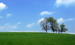 Landscape  - separation. Earth and sky separated by a fence Stock Image