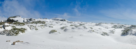 Landscape of Serra da Estrela Royalty Free Stock Photos