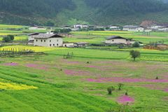 Landscape of Shangri-La tibetan Royalty Free Stock Image