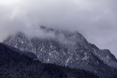 Landscape shot of mountains and forests. In winter time stock images