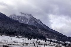 Landscape shot of mountains and forests. In winter time stock photography