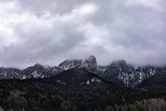 Landscape shot of mountains and forests. In winter time stock photos