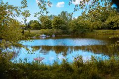 Landscape shot of a pond in the statue garden in the Frederik Meijer Gardens. In Grand Rapids Michigan royalty free stock image