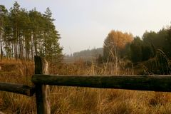 Landscape showing a meadow and forest Stock Images