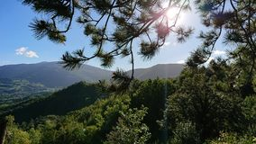 Landscape Mountains and Trees royalty free stock photo