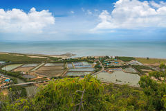 Landscape with Shrimp fields Royalty Free Stock Photos