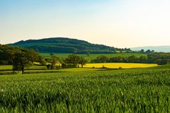 Contrasting colours of the Shropshire country side. Landscape royalty free stock photography