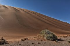 Landscape with shrubs and red dunes in the Namibia desert. Sossusvlei. Africa royalty free stock images