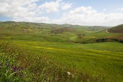 Landscape in Sicily, Italy Royalty Free Stock Images