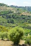 Landscape of Sicily Stock Images