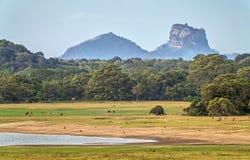 Landscape with Sigiriya Rock Stock Photos