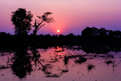 Landscape silhouette. Landscape evening sun in rural areas of the country Thailand Royalty Free Stock Image