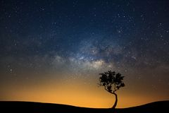 Landscape Silhouette Of Tree With Milky Way Galaxy And Space Dust In The Universe, Night Starry Sky With Stars Stock Photo
