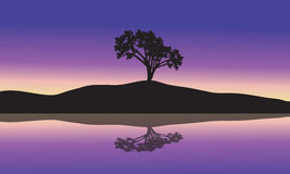 Landscape with silhouette of a single tree Royalty Free Stock Photo