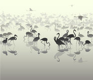 Landscape with silhouettes of flamingo 3. Background with sea views and flamingos silhouettes in shades of gray, illustration vector illustration