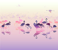 Landscape with silhouettes of flamingo. Background with sea views and silhouettes of flamingo pink and lilac tones,  illustration Royalty Free Stock Photo