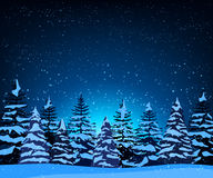 Landscape with silhouettes of snow-covered fir trees Stock Images