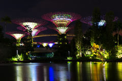 Landscape of the Singapore The Supertree at Gardens by the Bay i Stock Photography
