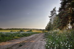 Landscape situated near Moscow Stock Photography