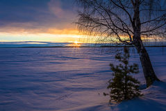 Landscape sketch of a winter`s evening, overlooking the lake. Landscape with a beautiful sunset on a winter evening Royalty Free Stock Images