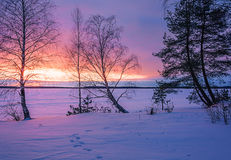 Landscape sketch of a winter`s evening, overlooking the lake. Landscape with a beautiful sunset on a winter evening Stock Image