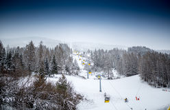 Landscape of ski lift on slope at mountain covered by pines Royalty Free Stock Image