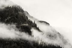 Fog covering the mountain forests with low cloud in Juneau alaska for fog landscape. Landscape of slope mountain with forest and pine tree with mist or thick fog Royalty Free Stock Photo