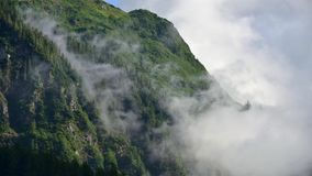 Fog covering the mountain forests with low cloud in Juneau alaska for fog landscape. Landscape of slope mountain with forest and pine tree with mist or thick fog stock video footage