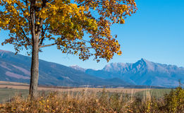 Landscape in Slovakia Royalty Free Stock Image