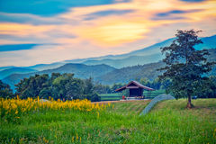 Landscape with small house and Mountain. chaingrai, thailand. Royalty Free Stock Images