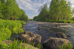 Landscape with small rapids. Royalty Free Stock Photo