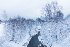 The landscape of the small river or the brook in the beautiful winter forest or in the park royalty free stock photography