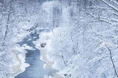 The landscape of the small river or the brook in the beautiful winter forest or in the park stock photos
