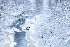 The landscape of the small river or the brook in the beautiful winter forest or in the park stock image