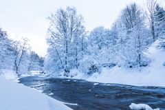 The landscape of the small river or the brook in the beautiful winter forest or in the park stock photography