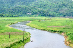 Landscape with small river life Royalty Free Stock Photography