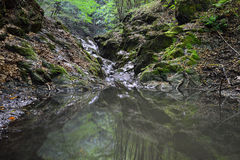 Landscape with small waterfall on the Borzesti stream going up to Borzesti Gorge. Royalty Free Stock Photos