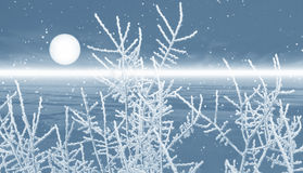 Landscape with snow Royalty Free Stock Image
